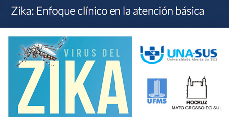 Banner Zika